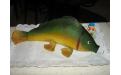 ÁLL2057  - erre az állatos torta kódra hivatkozzon!