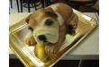 ÁLL2068  - erre az állatos torta kódra hivatkozzon!