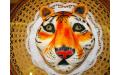 ÁLL2018  - erre az állatos torta kódra hivatkozzon!