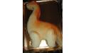 ÁLL2047  - erre az állatos torta kódra hivatkozzon!