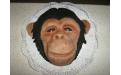 Majom torta KRE2139