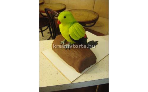 ÁLL2050  - erre az állatos torta kódra hivatkozzon!