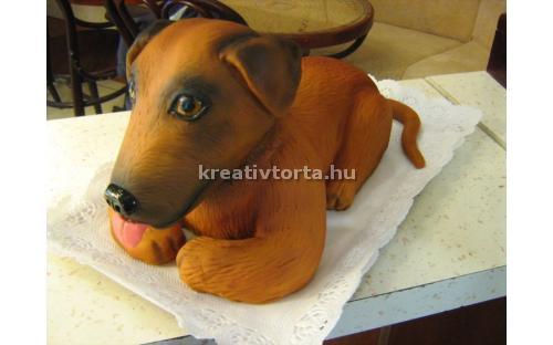 ÁLL2059  - erre az állatos torta kódra hivatkozzon!